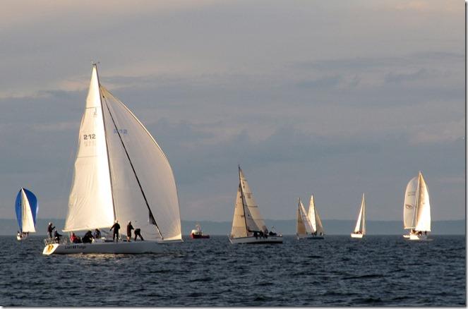 Shilshole regatta